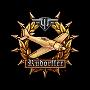 Медаль Рудорффера