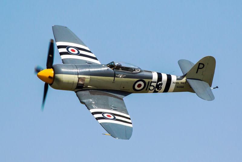 Файл:Hawker sea fury fb 11.jpg