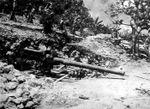 140-мм_морская_пушка_Тип_3_на_Сайпан.jpg