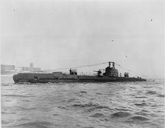 HMS_Safari_(P211).jpg