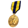 PCZC211_AA_Expeditionary_Medal.png