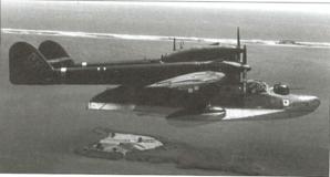 BV_138.png