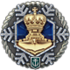 Icon_achievement_CAMPAIGN_NEWYEAR2018ELITE_COMPLETED.png