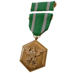 PCZC209_AA_Commendation_Ribbon.png