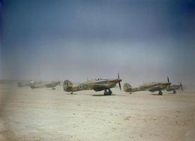 Hawker_Hurricane_IID_(4).jpg