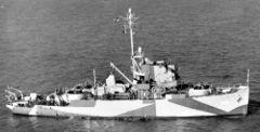 AM-264.jpg