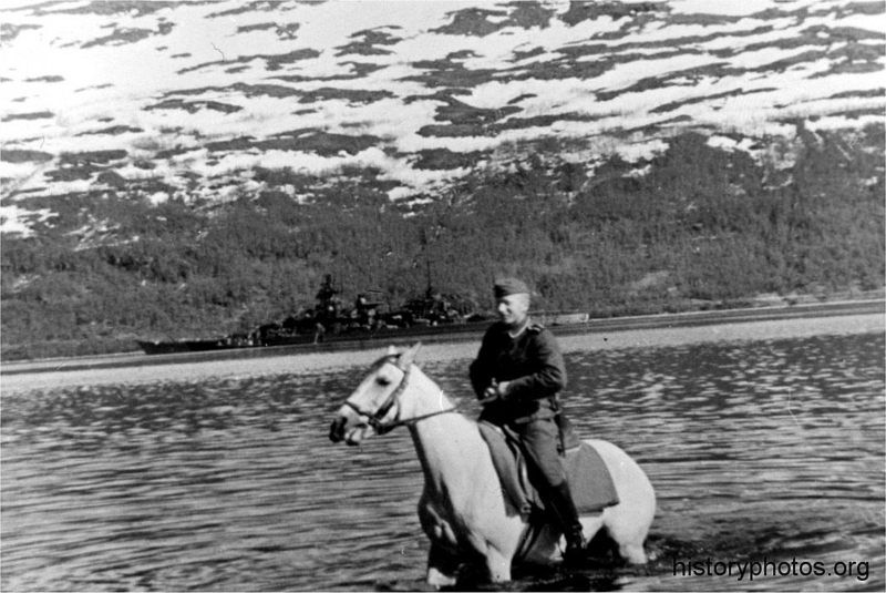 Файл:Scharnhorst 1943 конь.png