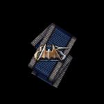 Raider hires.png