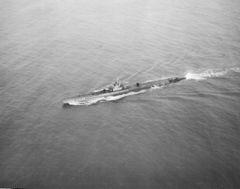 SS-311.jpg