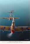 Spitfire_V_фото_7.jpeg