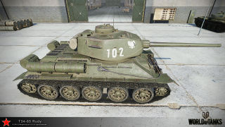 T35-85_rudy_6.jpg