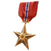 PCZC205_AA_Bronze_Star.png