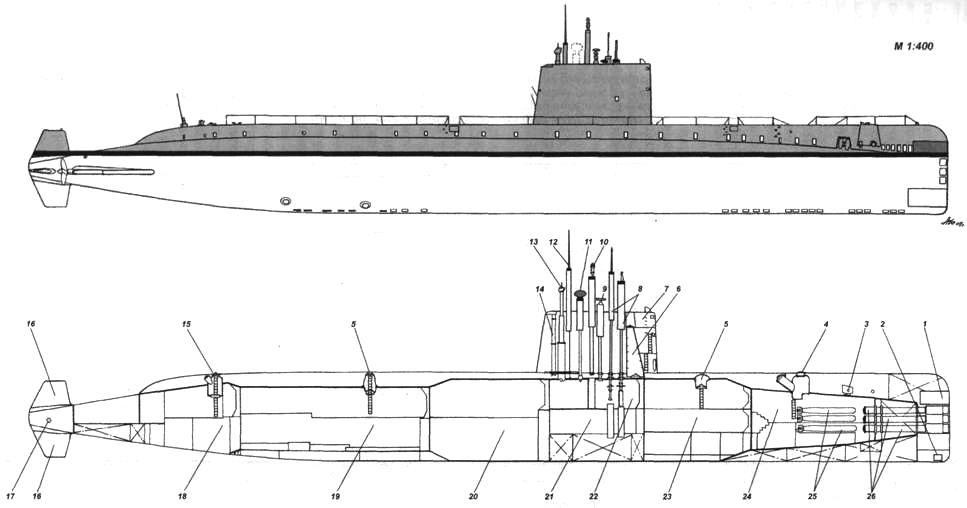 Nautilus1.jpg