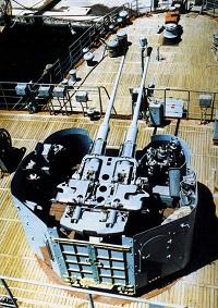 Zif-31.jpeg