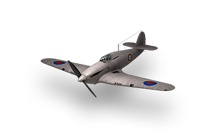 Plane_hurricane-i.png