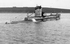 HMS_P31.jpg