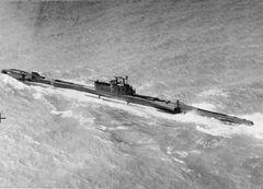 HMS_Tiptoe_(P332).jpg