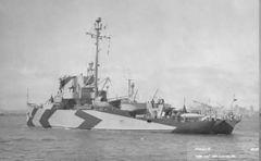 AM-158.jpg