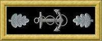 USN_com_rank_insignia_O5.jpeg