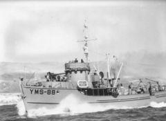 YMS-88.jpg