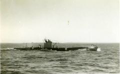 HMS_U1.jpg
