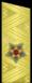 Погон_к_парадной_форме_одежды_(1962-94гг.).png