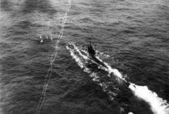 HMS_C25.jpg