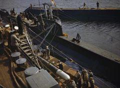 HMS_P311.jpg