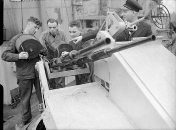 British_20_mm_in_Mark_V_twin_mounting_on_HMS_Starling.jpg