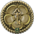 Icon_achievement_COLLECTION_HAPPYNEWYEAR2018_COMPLETED.png