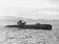 HMS_Sentinel_(P256).jpg