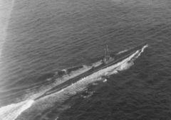 SS-404.jpg