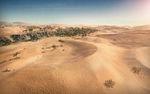 Desert screen.jpg