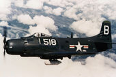 AD-3_Skyraider.jpeg