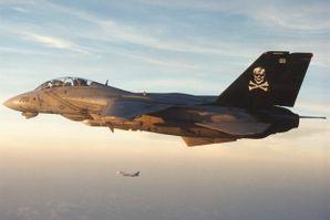 F-14_VF-84.jpeg