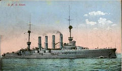 SMS_Roon_color.jpg