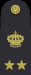 Shoulder_boards_of_sottotenente_di_vascello_of_the_Regia_Marina_(1936).png
