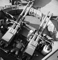 Bofors_40mm_comparsion.jpg