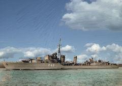 HMS_Tartar_цвет.jpg
