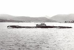 HMS_Trooper_(N91).jpg