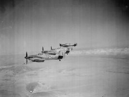 Hawker_Hurricane_IID_(2).jpg