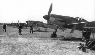 Fw_190_D.jpg