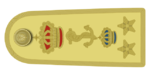 Shoulder_boards_of_ammiraglio_designato_d'armata_of_the_Regia_Marina_(1936).png