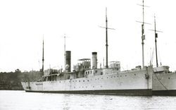 HMS_Bryony_(1917).jpg