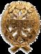 Знак_для_окончивших_Академический_курс_морских_наук.png