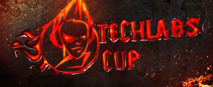Techlabs_cup.jpg