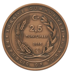turciya-25-liry-2015.png