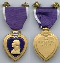 Purpleheart5.jpg
