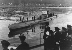 U-251.jpg